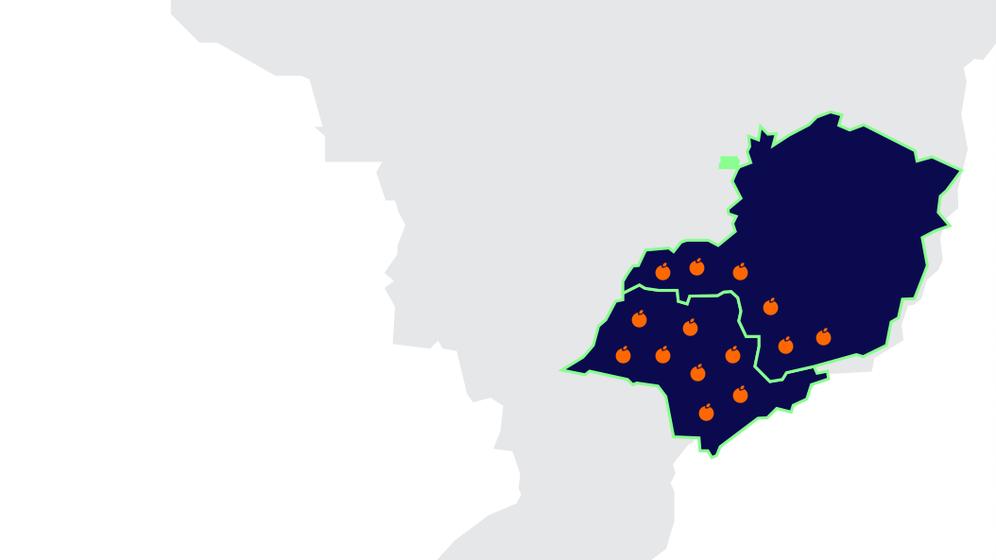 mapa mostra a atuação da citricultura no Brasil. São paulo e Minas lideram a produção