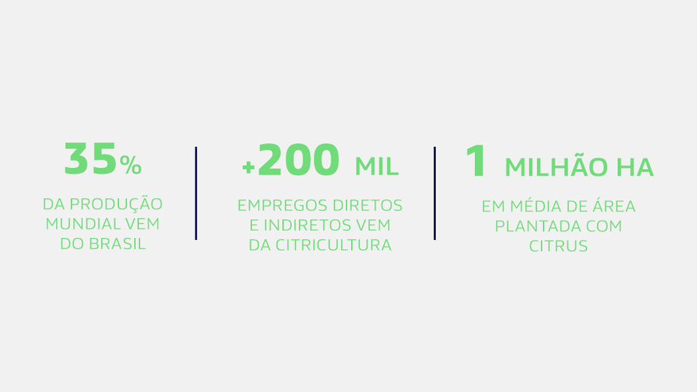 citricultura é um dos setores que mais empresa no agronegócio