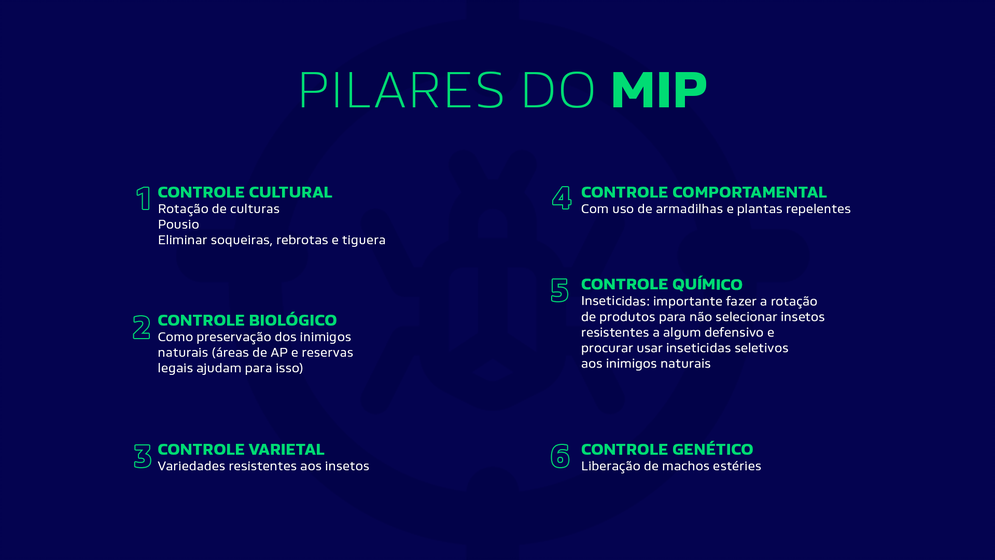 os pilares do MIP