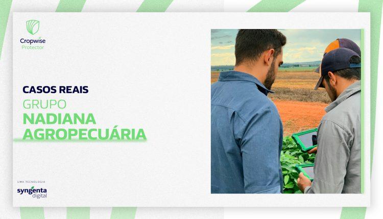 Tecnologia na análise de solo faz produtores do Mato Grosso aumentarem a produtividade da soja em 38%