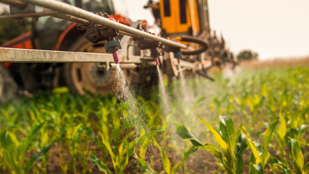Entre o controle químico das ervas daninhas resistentes ao glifosato, a orientação é o uso de herbicidas no pré-plantio,pré-emergência e pós-emergência